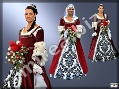 Ladies' noble baroque gowns